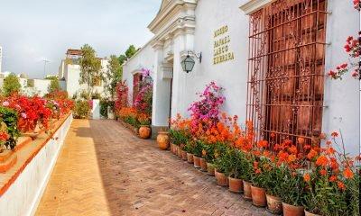 Como pasar un día cultural en Lima – San Isidro, P.Libre y Jesús María