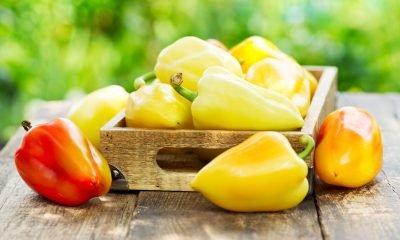 Alimentos orgánicos, una alternativa saludable