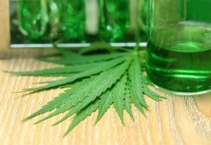El uso del cannabis medicinal