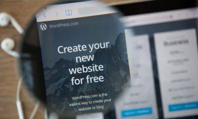 WordPress un successo e molte leggende metropolitane